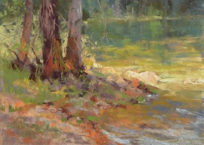 plein air soft pastel painting of trees by a lake by Sharon Bamber