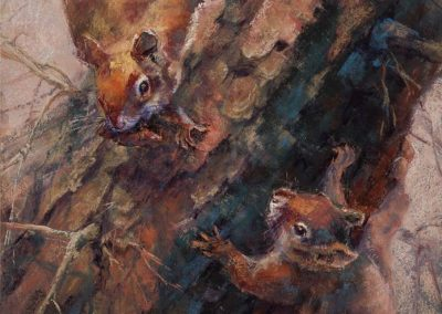 soft pastel painting of two squirrels by Sharon Bamber