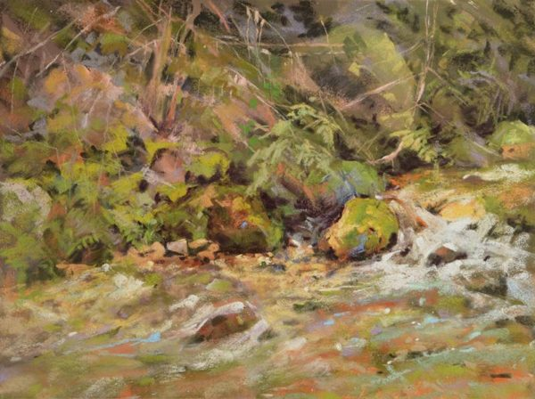 plein air soft pastel painting of a stream and its banks by Sharon Bamber