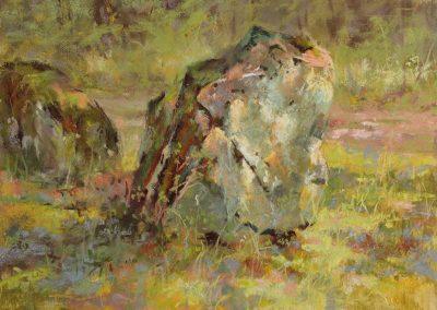 Guard Stones