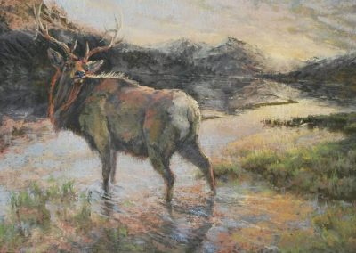 soft pastel painting of an elk standing in a mountain lake by Sharon Bamber