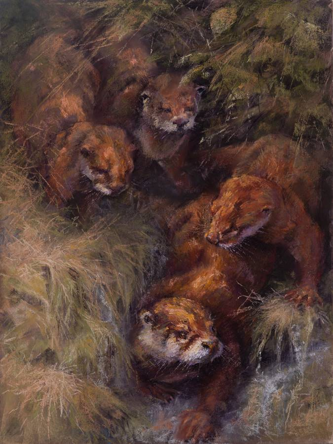 soft pastel painting of an otter with pups by Sharon Bamber