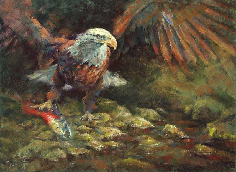 soft pastel painting of a bald eagle with a salmon by Sharon Bamber