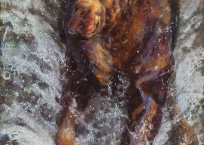 soft pastel painting of a young bull moose running through water by Sharon Bamber
