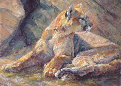 soft pastel painting of a cougar by Sharon Bamber
