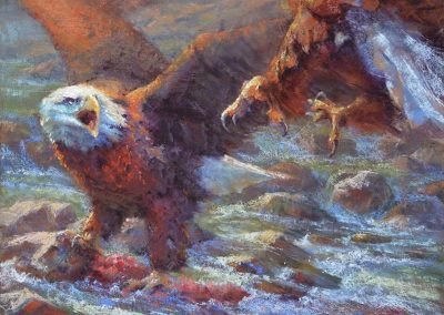 soft pastel painting of two bald eagles by Sharon Bamber