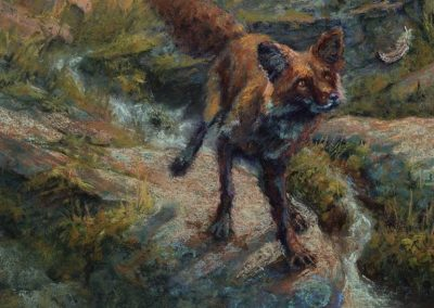 soft pastel painting of a red fox by Sharon Bamber