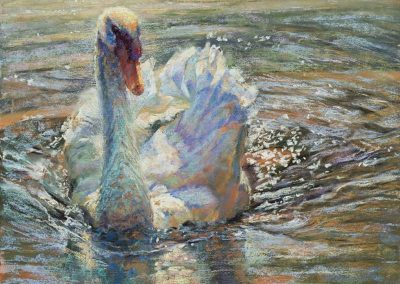 soft pastel painting of a mute swan by Sharon Bamber