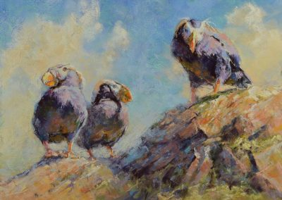 soft pastel painting of three tufted puffins by Sharon Bamber