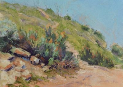 plein air soft pastel painting of a path over a hill by Sharon Bamber