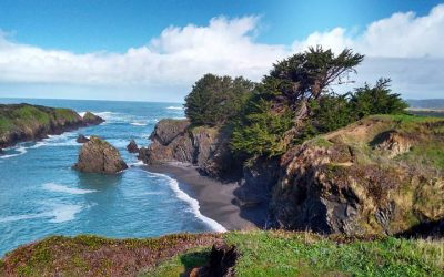 Great Places to Paint: North California Coast