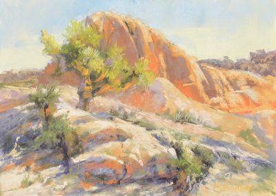 plein air soft pastel painting of Joshua Tree and desert rocks by Sharon Bamber