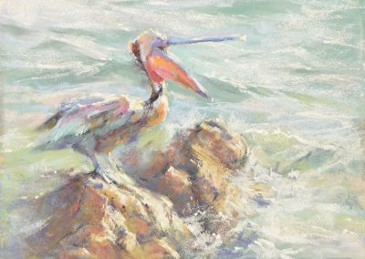 soft pastel painting of a pelican by Sharon Bamber