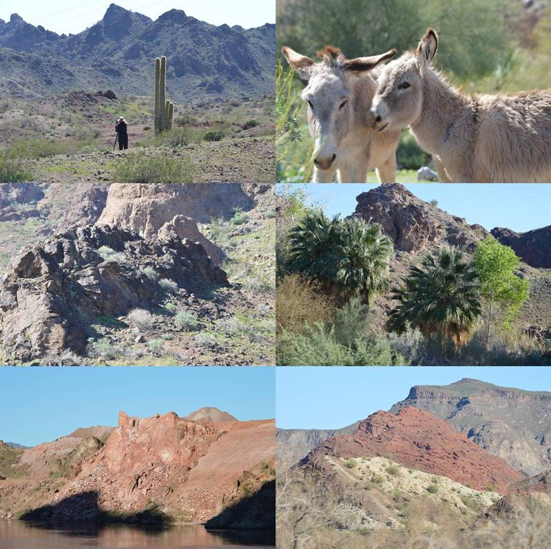Photos of the landscape surrounding Lake Havasu City, by Sharon Bamber