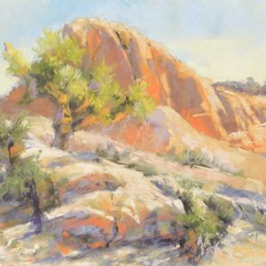 Life on the Edge, 9 x 12 plein air pastel painting by Sharon Bamber