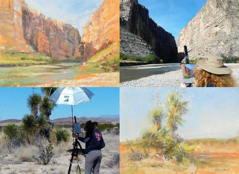 plein air soft pastel paintings of Big Bend National Park by Sharon Bamber