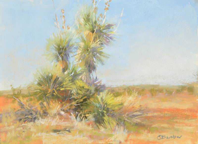 Old Maverick plein air pastel painting of yuccas