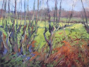Hedge Patterns by Sharon Bamber plein air pastel painting of hedgerow in France