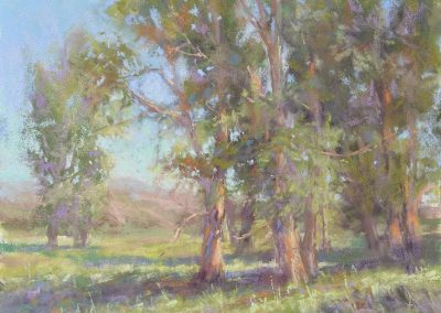 Paradise Valley by Sharon Bamber plein air soft pastel painting of cottonwood trees