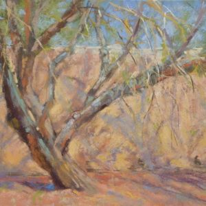 Shapes and Shadows by Sharon Bamber plein air soft pastel painting of tree and adobe wall