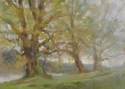 Soft Mist Gentle Drizzle by Sharon Bamber plein air soft pastel painting of 3 trees