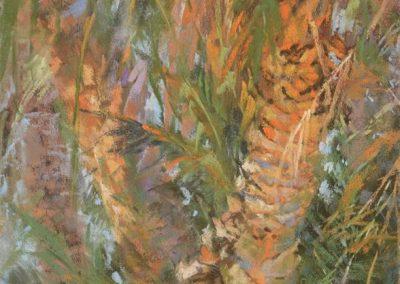 Tangled Palms