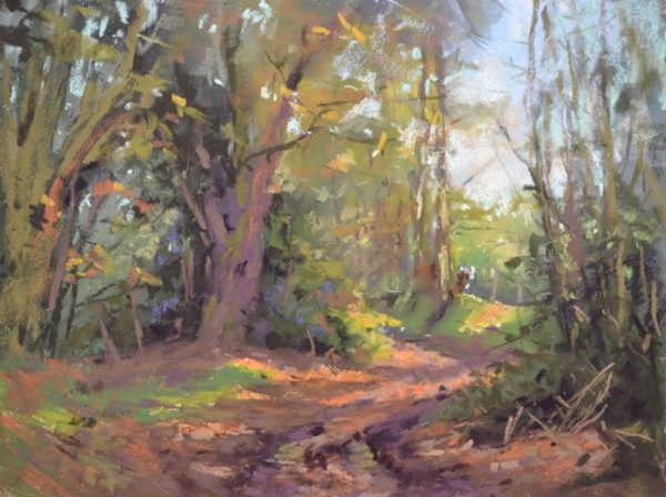 The Walk to the Little Lakes by Sharon Bamber plein air soft pastel painting of woodland trail footpath