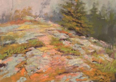Rainstorm Rocks by Sharon Bamber plein air pastel painting of wet mountain rocks