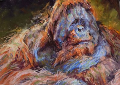 Loss by Sharon Bamber soft pastel painting of an adult orangutan