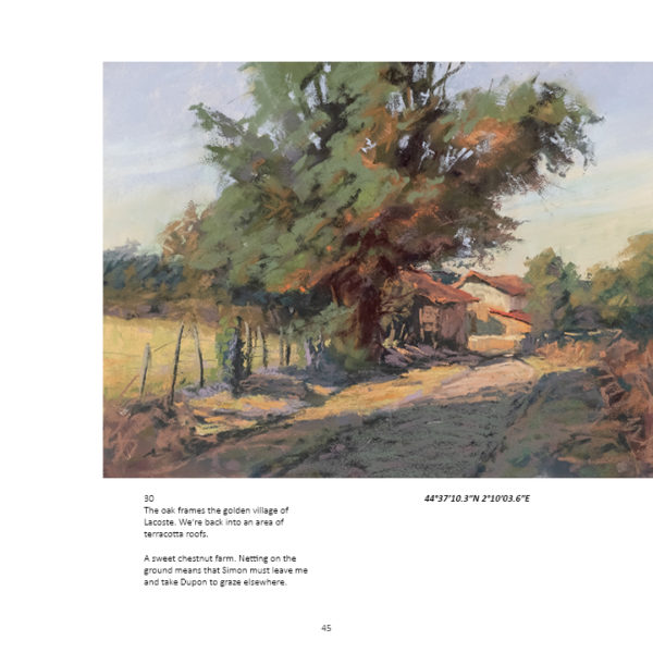 book by sharon bamber 1000 miles walking and painting the way of saint james pg 45
