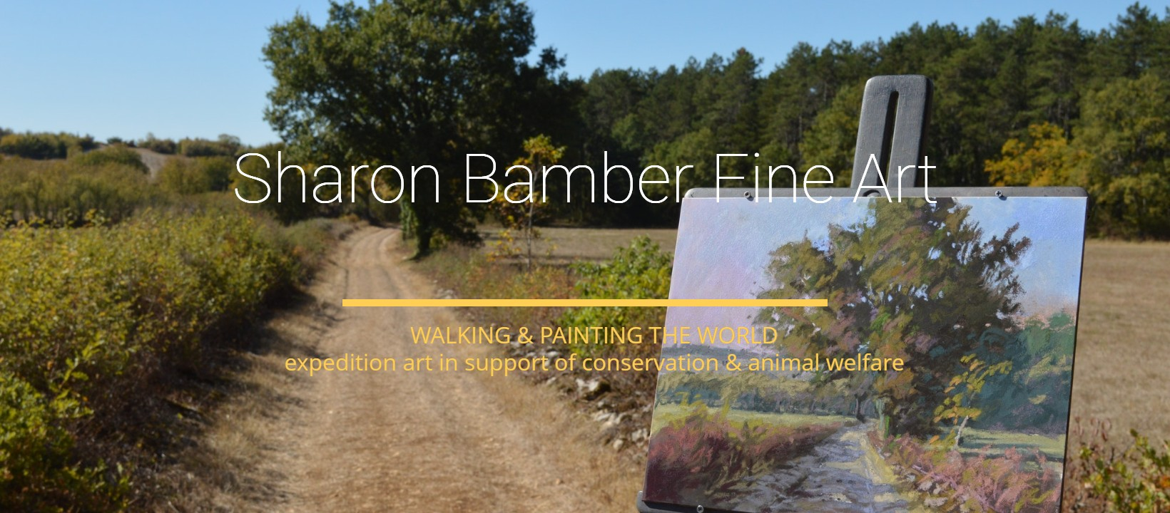 Sharon Bamber Painting from 1000 Miles walking & painting the Way of St James